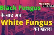 Black Fungus के बाद अब सामने आए 'White Fungus' के मामले, अबतक मिली जानकारी के लिए पढ़ें