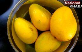 कैलेंडर की एक तारीख, फलों के राजा आम के नाम 22 July – National Mango Day